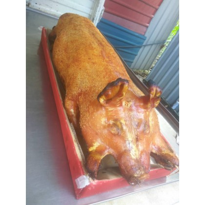 Roasted Pig Pork Booking 过大礼生日拜神金猪烧猪预定